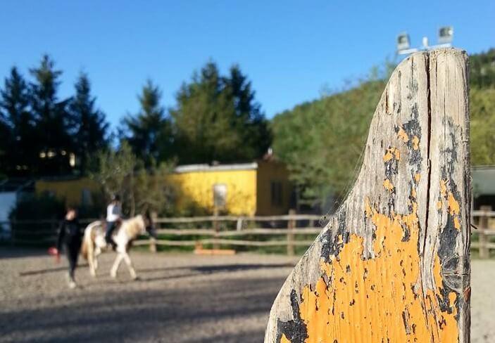 Storia della Riabilitazione Equestre