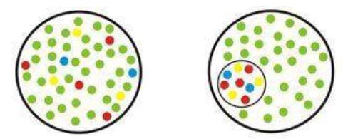 Inclusione vs Inserimento