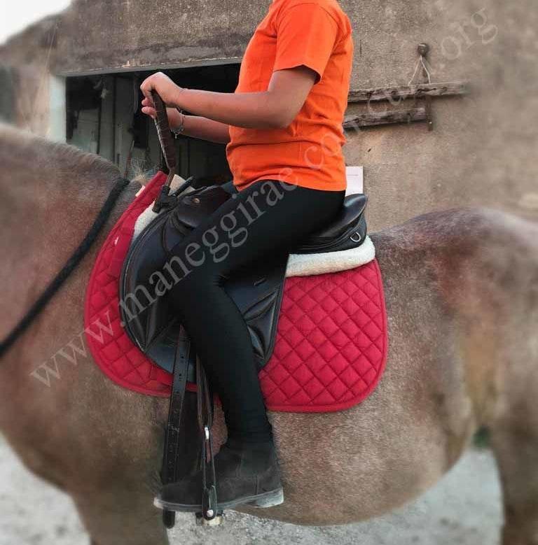 Gli effetti terapeutici del cavallo