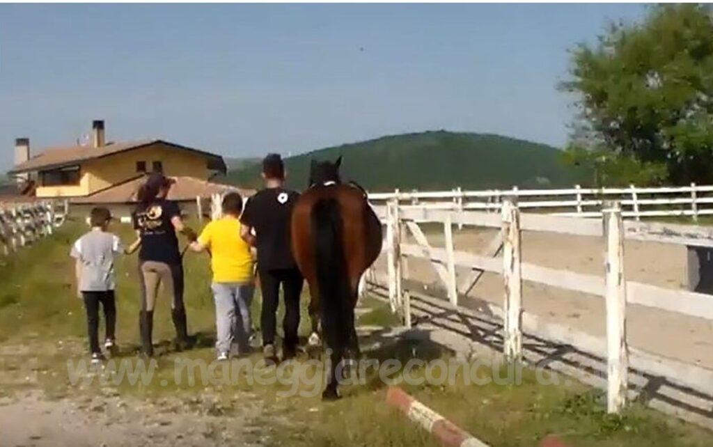 Interventi Assistiti con i Cavalli