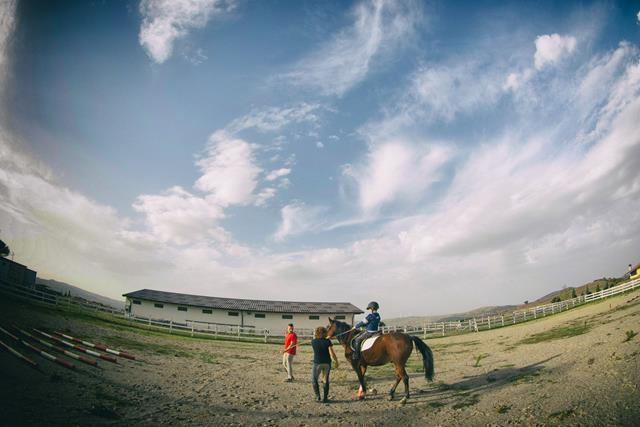 Ippoterapia e Riabilitazione Equestre sono la stessa cosa?
